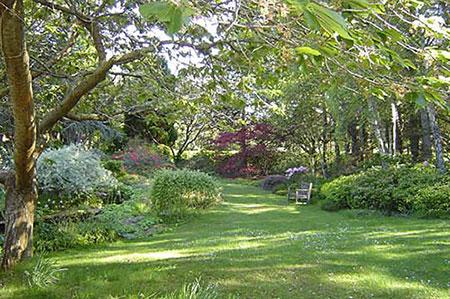 """L'antico sciamanesimo druidico si riferiva alla spiritualità del """"giardino druidico"""", il Gala Druji""""come tempio nella natura, in cui la magia e la poesia delle piante portavano ad incontrasi con i druidi nella sinfonia mistica di Madre Terra"""