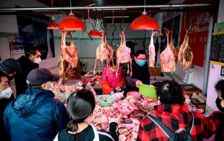 """L'inferno dei """"wet market"""", i mercati umidi, nei quali vengono portati animali vivi, per essere uccisi davanti agli occhi dei compratori. Sono chiamati così perché il pavimento è interamente coperto di sangue degli animali uccisi che si mescola all'acqua uscita dagli acquari e alle interiora di animali. I """"wet market"""" sono molto diffusi in Cina, ma sono presenti anche in altri paesi, come il Giappone, il Vietnam, le Filippine."""
