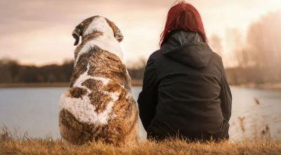 A volte sembra che solo gli animali ci comprendano…
