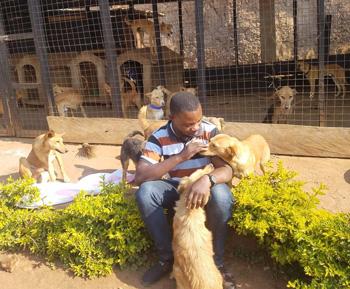 Con i suoi giovani volontari, il rifugio Sauvons nos Animaux nella Repubblica Democratica del Congo (partner AKI), sta allestendo uno spazio dove verranno sterilizzati gli animali del rifugio. La sovvenzione AKI coprirà lo stipendio di 6 mesi di un veterinario e un assistente veterinario e medicinali e forniture in modo che Sauvons nos Animaux possa sterilizzare e fornire altre cure necessarie per curare gli animali. Il rifugio ha inoltre creato un club giovanile, i cui membri fanno volontariato al rifugio per imparare a prendersi cura di cani e gatti, alcuni giocano a calcio con i cani, altri fanno loro il bagno e alcuni mostrano persino interesse per il lavoro veterinario.