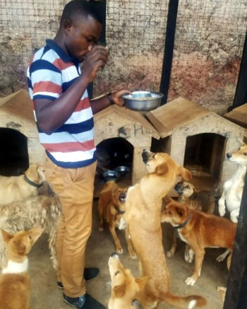 Paterne Bushunju mentre assiste i suoi cani